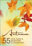 View: Autumn Catalogue